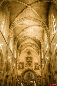 Collégiale Notre-Dame 101